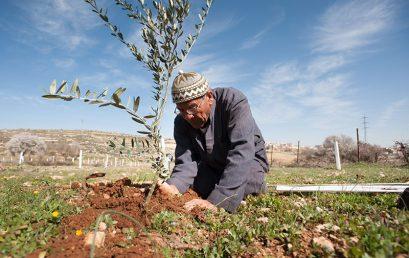 الاحتفال باليوبيل الفلسطيني